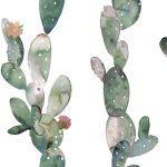 Sienų plytelės Glimpse Cactus